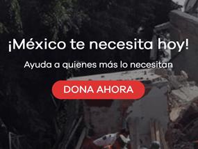 MEXICO TE NECESITA HOY